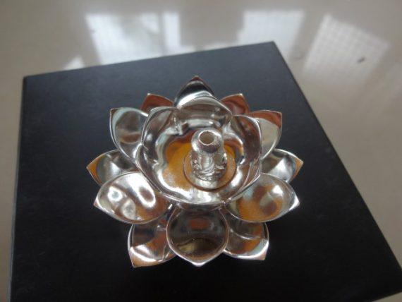 Lotus Deepa