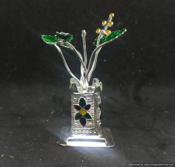 Silver Tulasi Plant