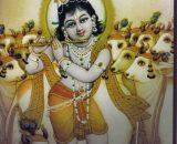 Bhagavata 1 Skanda