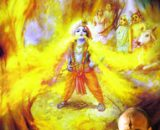Kadgicchu Kudida Krishna